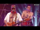 Manu Chao - Pinocchio (Live)