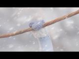 Робоцып / Robot Chicken (сезон 5) серия 16 (КетчупТВ) [HD 720]