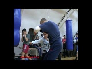 Нарезка боксерской мудрости
