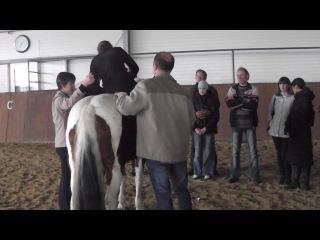 3-я часть семинара (21.10.13) Тема: «Иппотерапия. Современные направления развития метода и опыт работы» «Лечебная верховая езда для детей с расстройствами аутистического спектра»
