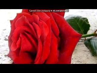 «Любимые цветы.» под музыку Из сериала Диван для одинокого мужчины - Радуга моя. Picrolla