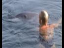 Человек и Дельфин
