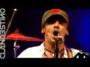 '' Manu Chao '' - Clandestino ( Live HQ )