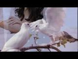 Артур Руденко - Слёзы (Ветер гонит злые тучи)