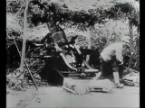 (мгндня)  Убийство эрцгерцога Франца-Фердинанда