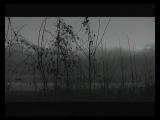 Vinterriket - Grauweiss