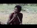 Африка Faszination Afrika 2011