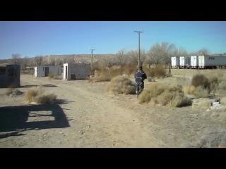 Desert Fox Field - The Best