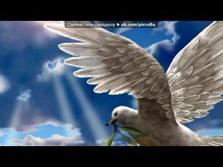 «Голуби» под музыку Ринат Сафин - Белый голубь(..песня о непростых взаимоотношениях моих бабушки и дедушки. она рассказывала мне, что после смерти он прилетал к ней в виде белого голубя и стучался в окно..). Picrolla