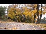 Прогулка по осени (Калининград. Нижнее озеро)