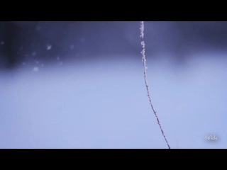 Oen Bearen TrancEye - Goodnight My Everything (Original Mix)