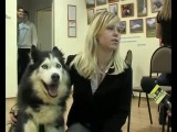 Собака наркоман (Советую смотреть, Ржака) -D