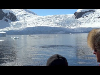 Кит под водой, возле самой лодки. Жаль, что не перевернул, вот это видио бы вышло!!