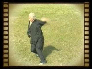Мастер даосской алхимии и багуачжан Люй Цзыцзянь (118 лет) исполняет Daoist- Bagua Master Lu Zijian (117)  -  Taiyi Huolong Palm