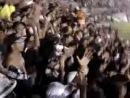 Ботафого! Барабаны на трибуне! (♥Это стоит увидеть и услышать!♥)