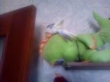 мой попугай и его секс игрушка)))