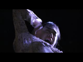 Один пропущенный звонок  着信アリ (2003)