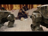Прикол над моим котом))