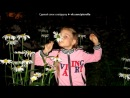 «Летний отдых у бабушки» под музыку Потап и Настя Каменских - Прилелето (Прилетело лето). Picrolla