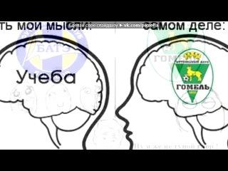 «Со стены Мемы про Гомель(Ф.к.Гомель)» под музыку Челенджер - [Ты футбольный хулиган]. Picrolla