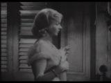 www.Guardafilm.Me - Un Tram Che Si Chiama Desiderio - Marlon Brando Vivien Leigh