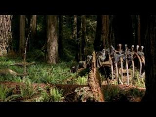 Прогулки с динозаврами. Часть 2. Эпоха титанов.