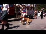 Gay pride parade, vancouver ;)