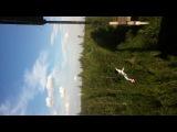 Сейчас вылетит птичка :)