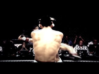 Cub Swanson/Каб Свонсон ~ MMA HL [Brown Pride™]