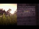 ♥°• Научные факты Корана - Нефть