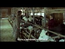 Одинокая корова плачет на рассвете / A Lonely Cow Weeps at Dawn / Chikan gifu: Musuko no yome  (2003)
