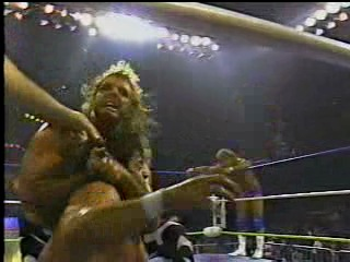 WrestleWar Wild Thing 02 25 1990