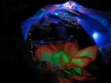 Zirrex @ Colours of Goa 15092012