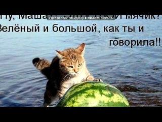 «котята» под музыку ты мой миленький,хорошенький мой котик,положу тебе сосисочку я в ротик - хахах=))). Picrolla