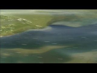BBC: Морские гиганты. Серия 2. Мудрецы глубин.
