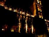 Бельгийская ратуша. Вечернее иллюминационное шоу под классическую музыку.