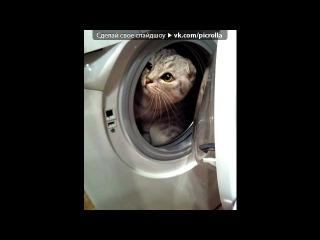 «Я ♥♡ стиральную машину» под музыку Evanescence - Made Of Stone [OST Другой мир 4:Пробуждение] 2012. Picrolla
