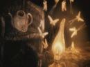 Ёжик в тумане - веточки можжевеловые