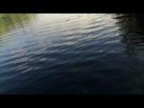 рыбалка на р. Охта Кемский р-он 2013г.