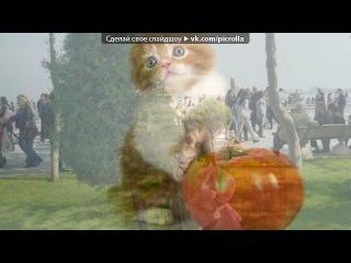 «С моей стены» под музыку Анастасия - Вальс из мультфильма (на русском) минус. Picrolla