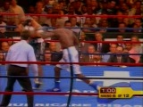 Рой Джонс vs Антонио Тарвер (3 бой)