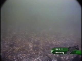 Korda Подводная ловля карпа Фильм 4 Часть 1