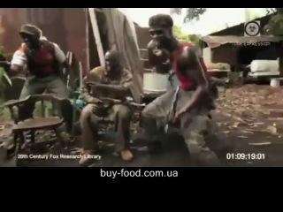 Обезьяна с автоматом АК-47 в Африке