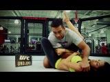 UFC Uno a Uno: рычаг локтя
