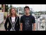 Emily VanCamp & Josh Bowman -