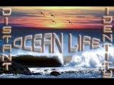 Distant Identity - EOYC 2012 on AH. FM (28-12-2012). [Trance-Epocha]