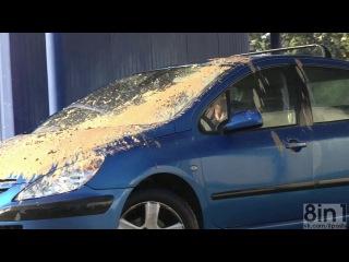Розыгрыш. Реми Гайяр - Большой голубь и автомобиль / Remi Gaillard - Big pigeon and the car (clip from the film Rémi Gaillard est n'importe qui)