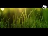 Sergio Mauri Feat. Susan Tyler - Borderline [Official Video] HD