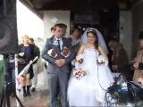 Весілля у Володі