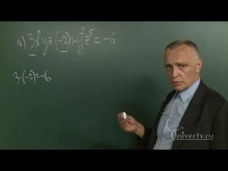 Математика. 7 класс. Урок 32. Понятие одночлена. Стандартный вид одночлена.